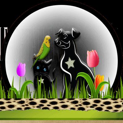 dieren numerologie, hond, kat, huisdieren, Dubbele-Getallen