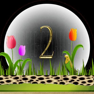 dieren numerologie, nummer 2