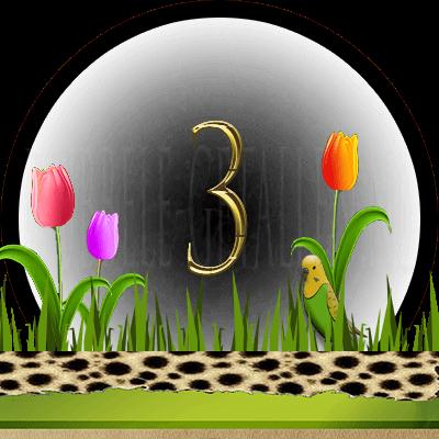 dieren numerologie, nummer 3