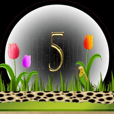 dieren numerologie, nummer 5