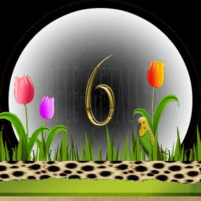 dieren numerologie, nummer 6