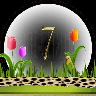 dieren numerologie, nummer 7
