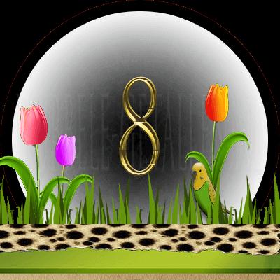 dieren numerologie, nummer 8