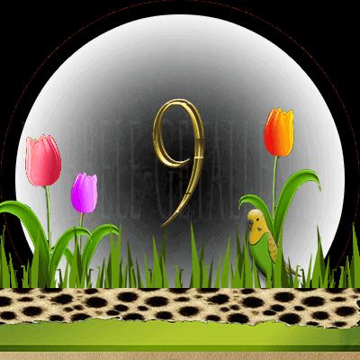 dieren numerologie, nummer 9