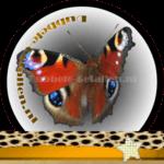 Vlinder betekenis Dubbele-Getallen Dagpauwoog