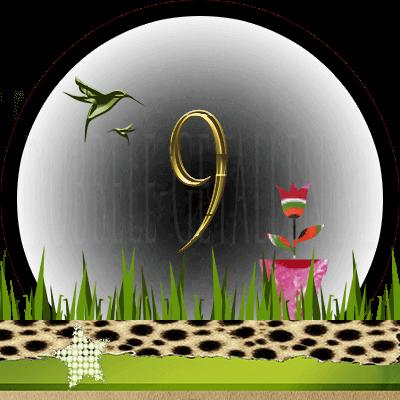 Huisnummer 9, Dubbele-getallen