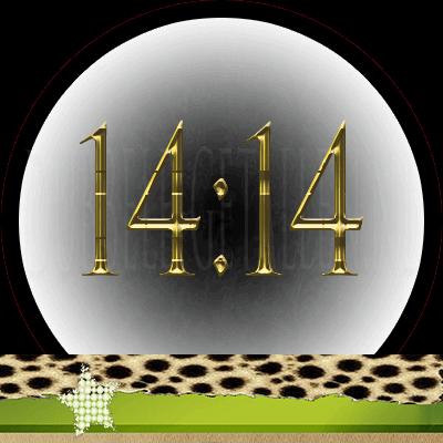 14:14 Dubbele-Getallen.nl