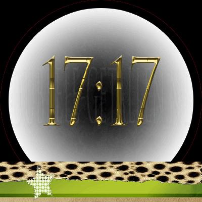 17:17 Dubbele-Getallen.nl