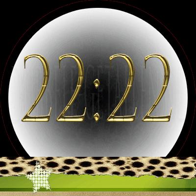 22:22 Dubbele-Getallen.nl