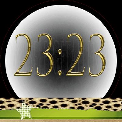 23:23 Dubbele-Getallen.nl