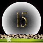 Nummer 15 dubbele-getallen