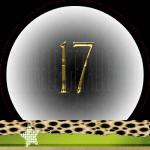 Nummer 17 dubbele-getallen