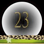 Nummer 23 dubbele-getallen