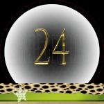 Nummer 24 dubbele-getallen