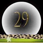 Nummer 29 dubbele-getallen