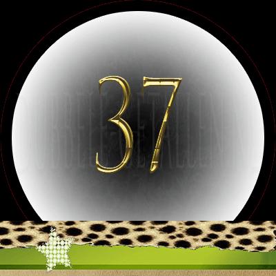 Nummer 37 dubbele-getallen