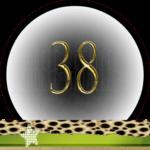 Nummer 38 dubbele-getallen