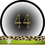 Nummer 44 dubbele-getallen