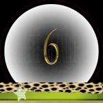Nummer 6 dubbele-getallen