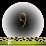 Nummer 9 dubbele-getallen