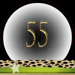 Nummer 55 dubbele-getallen