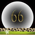 Nummer 66 Dubbele-Getallen