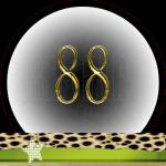 Nummer 88 Dubbele-getallen