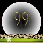 Nummer 99 Dubbele-getallen